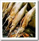 steckfis
